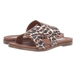 NEW Steve Madden Leopard Sandals